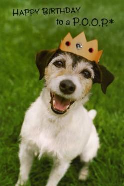 2004-2007 Dogs Hallmark (4)